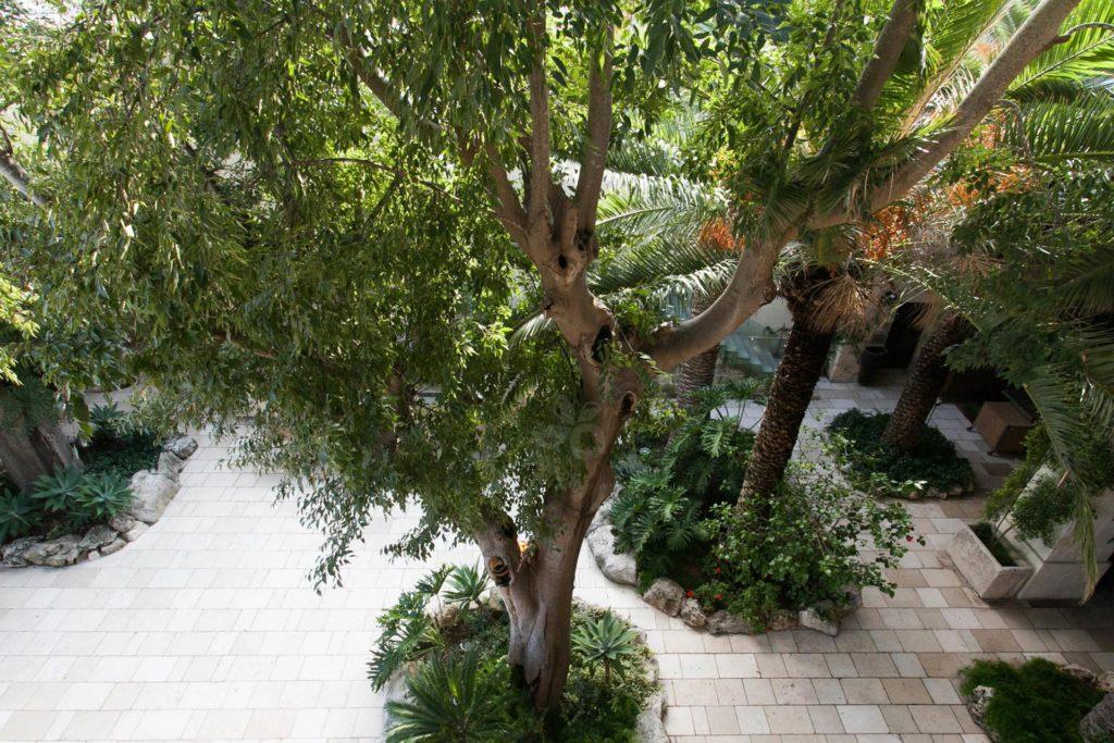 Hotel Torre Del Parco (Gallery)